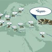 Warum der Hund begraben liegt – Ausstellung über deutsche Wörterbücher vom 6. Juni bis 19. September 2013 in Greiz