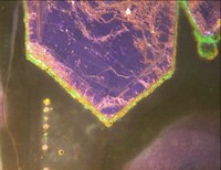 Quarzkristall unter KL