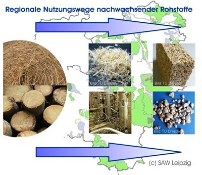 Regionale Nutzungswege nachwachsender Rohstoffe