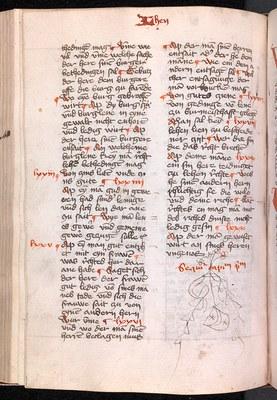 """Leithandschrift der Edition """"Glossen zum Sachsenspiegel-Lehnrecht. Die kürzere Glosse"""", 1431/32, fol. 98 v (Leipzig, Universitätsbibliothek, Hs. 950)"""