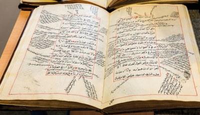Interkulturelle historische Grundwissenschaften (IHG)